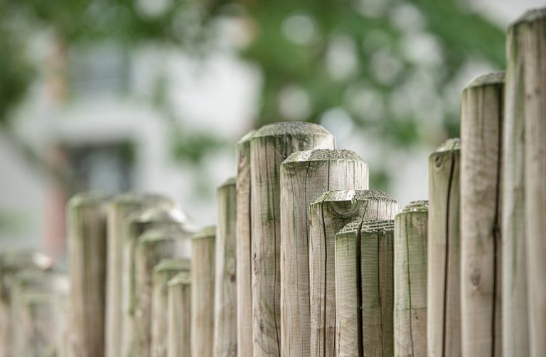 Home Improvement: Why Wilson Stood on the Other Side of the Fence